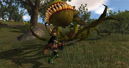 [Enty]KURONEKO SOFT IS CREATING 'オンラインゲーム(MMORPG)'